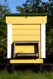 Bee Hive. Yellow bee hive made of wood painted yellow royalty free stock photo