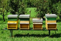 Bee hive. In a meadow Stock Photography