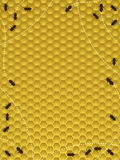 Bee hive border. Honey bees moving around the hive - border or background vector illustration