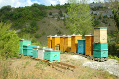 Bee hive in Crimean mountains. Apiary for the production of useful and fragrant honey from wild herbs in the Crimean mountains Stock Photography