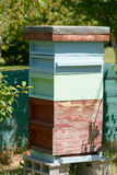 Bee hive in garden Royalty Free Stock Photos