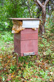 Bee hive in the garden Stock Photography