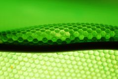 Bee hive in green. Marco shot of a bee hive shaped background in green stock photography