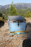 Bee hive in Northern Evia in Greece. Royalty Free Stock Image