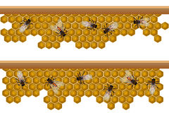 Bee hive pattern Stock Photos