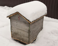 Bee hive in snow. Stock Image