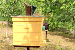 Bee hive. Traditional beehive painted yellow in the garden clear day Stock Photography