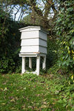Bee hive. White bee hive set in the garden with trees in the background stock image