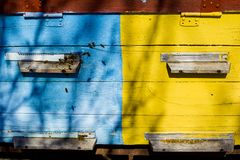 Bee hive with a womb, a swarm of domestic bees to get honey from honeycombs. Summer house for the bee family royalty free stock photos