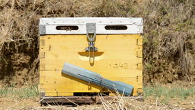 Bee Hive stock video footage
