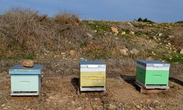 Bee hives. And blue sky Stock Photos