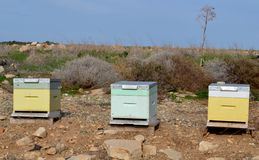 Bee hives. And blue sky Royalty Free Stock Photo