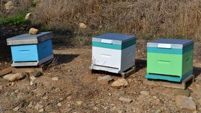 Bee hives. And blue sky Royalty Free Stock Photos