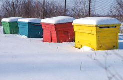 Bee hives hibernating. Bee hives in the wintertime covered by snow Royalty Free Stock Images