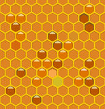 Bee hives with honey Royalty Free Stock Photos