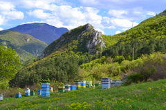Bee hives in mountains Stock Image