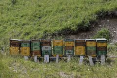 Bee hives in the mountains Royalty Free Stock Photography