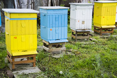 Bee hives Royalty Free Stock Photos