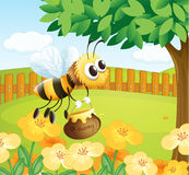 A bee holding a honey while flying Royalty Free Stock Photos