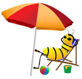 Bee on holiday Royalty Free Stock Images