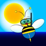 Bee on holiday Stock Images