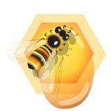 Bee and honey Stock Photo