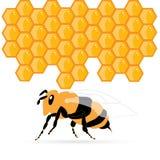 Bee_honey Imagens de Stock Royalty Free