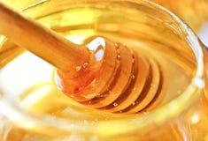 Bee honey Royalty Free Stock Photography