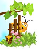 Bee and honey, cdr vector. Illustration with a smiling bee and bucket with honey, poppy flowers, grass and branch with green leaves, vector format royalty free illustration