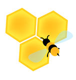 Bee on honey cells vector. Vectored simple illustration of bee flying over honey cells royalty free illustration