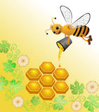Bee honey in the honeycomb pours a bucket of Royalty Free Stock Photo