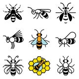 Bee and honey icons. Vector set royalty free illustration
