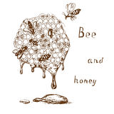 Bee and honey 2 Royalty Free Stock Photography