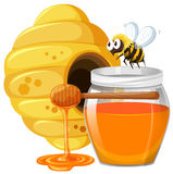 Bee and honey in jar Royalty Free Stock Images
