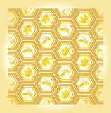 Bee and honey pattern. Illustration of bee filling cells with honey and flowers Royalty Free Stock Images