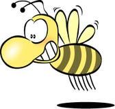 Bee, Honey, Wasp, Hornet, Funny Stock Photo