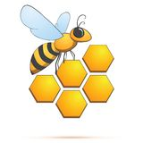 Bee on honeycells. Vector illustration Royalty Free Stock Image
