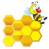 Bee and honeycomb Royalty Free Stock Photo