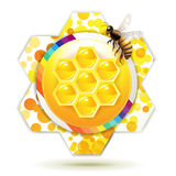 Bee and honeycomb Royalty Free Stock Photography