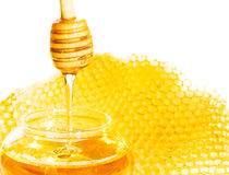 Bee honeycomb Stock Photography