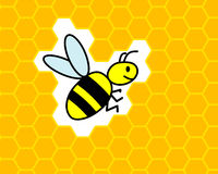 Bee honeycomb. Flying bee on honeycomb background Royalty Free Stock Images