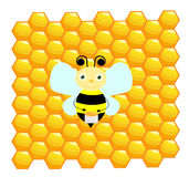 Bee with honeycomb background. Little bee with honey and honeycomb Royalty Free Stock Photo
