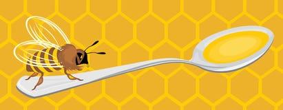 Bee on the honeycomb background. Illustration Stock Photo