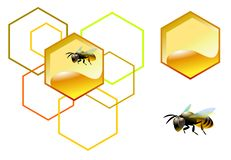 Bee with honeycomb royalty free stock photography