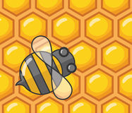 Bee and honeycomb Stock Image