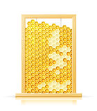 Bee honeycomb in frame Stock Images