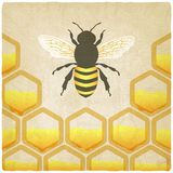 Bee honeycomb old background Stock Images