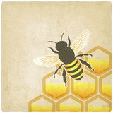 Bee honeycomb old background Royalty Free Stock Photos