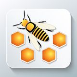 Bee and honeycomb with shadow Royalty Free Stock Image