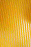 Bee honeycomb texture Royalty Free Stock Image